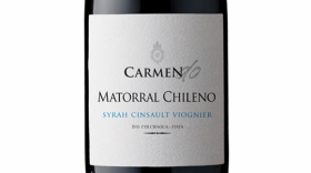 Carmen Do 2016 Matorral Chileno  Label