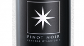 Invivo 2011 Pinot Noir | Red Wine