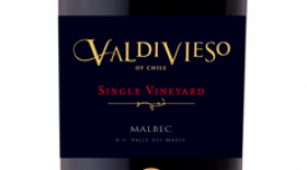 Valdivieso Single Vineyard 2010 Malbec