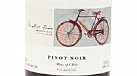 Cono Sur Pinot Noir | Red Wine