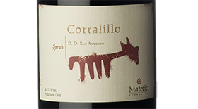 Matetic Vineyards Corralillo Syrah 2007 | Red Wine