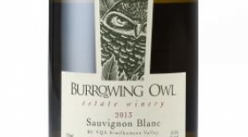 Burrowing Owl Estate Winery 2013 Sauvignon Blanc Label