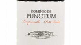 Dominio de Punctum 2011 Petit Verdot blend | Red Wine