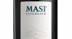 Masi Tupungato Passo Doble 2015 | Red Wine