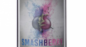 Smashberry Red 2011 | Red Wine