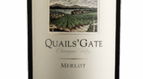 Quails' Gate Winery 2013 Merlot | Red Wine