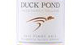Duck Pond 2013 Pinot Gris (Grigio) Label
