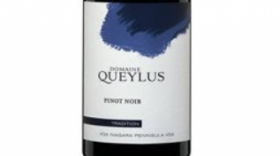 Domaine Queylus  2015 Tradition Pinot Noir | Red Wine