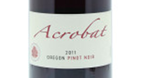 Acrobat | Red Wine
