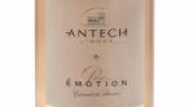 Antech Limoux 2014 Cuvée Pure Emotion Brut Nature  | Rosé Wine