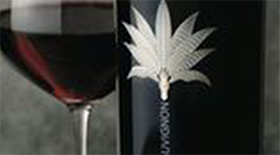 Silver Palm 2009 Cabernet Sauvignon | Red Wine